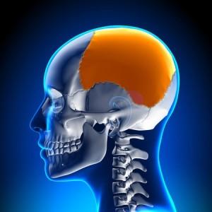 Cranial Adjustments